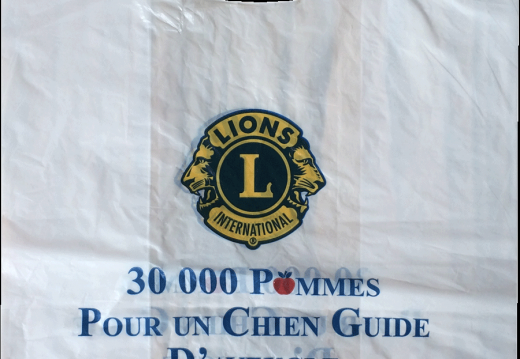 Plastique-Lions-International